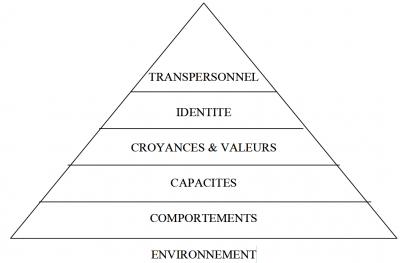 La Pyramide des Niveaux Logiques